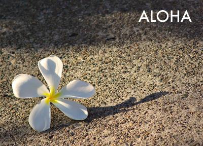 Aloha Lei