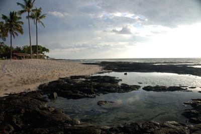 Aloha Camera